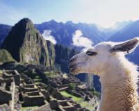 ペルー世界遺産紀行 7日 航空会社指定なし