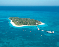 グリーン島(フリータイム・イメージ)