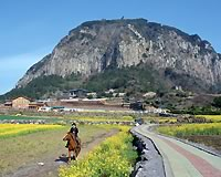 済洲島/山房山(イメージ)