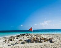 サンドビーチとビーチフラッグ(イメージ)