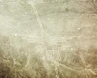 地上絵/イメージ