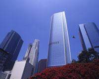 ロサンゼルス/イメージ